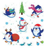 Insieme del pinguino di Natale Fotografie Stock
