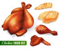 Insieme del pollo fritto illustrazione vettoriale