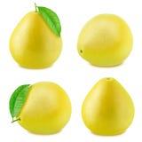 Insieme del pomelo isolato su un fondo bianco Immagini Stock