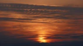Insieme del sole di estate Fotografie Stock Libere da Diritti