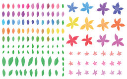 Insieme dell'acquerello del fiore di forma del petalo della foglia Fotografie Stock