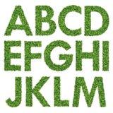 Insieme dell'alfabeto dell'erba verde Fotografie Stock Libere da Diritti
