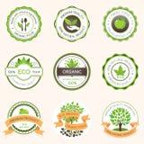 Insieme dell'alimento biologico verde dell'etichetta fotografia stock