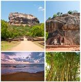 Insieme dell'ambiente della Sri Lanka Fotografia Stock Libera da Diritti