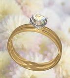 Insieme dell'anello di cerimonia nuziale del diamante dell'oro Fotografia Stock Libera da Diritti