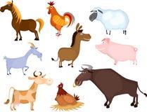 Insieme dell'animale da allevamento Fotografie Stock Libere da Diritti