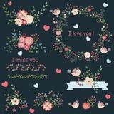Insieme dell'annata dei fiori Immagini Stock