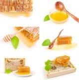 Insieme dell'ape del miele su un ritaglio bianco del fondo Fotografia Stock