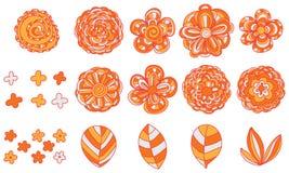 Insieme dell'arancia di colore del fiore royalty illustrazione gratis