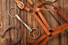 Insieme dell'attrezzatura del cavallo su fondo di legno Fotografia Stock
