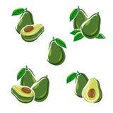 Insieme dell'avocado Vettore royalty illustrazione gratis