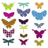 Insieme dell'elemento astratto per i vestiti delle ragazze Farfalla creativa della siluetta Fotografia Stock Libera da Diritti