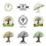 Insieme dell'etichetta dell'olio d'oliva Immagini Stock Libere da Diritti