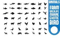 Insieme dell'icona dell'animale esotico e domestico illustrazione di stock