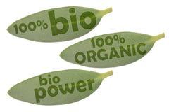 Insieme dell'icona con tre foglie verdi e le iscrizioni 100% organico, potere organico e bio- di 100% immagine stock