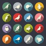 Insieme dell'icona degli uccelli Fotografia Stock