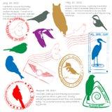 Insieme dell'icona dei bolli di sorveglianza di uccello Fotografia Stock Libera da Diritti