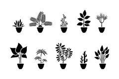 Insieme dell'icona dei fiori della casa Pittogramma nero della pianta in vaso illustrazione di stock
