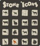 Insieme dell'icona dei mammiferi illustrazione di stock