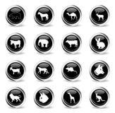 Insieme dell'icona dei mammiferi royalty illustrazione gratis