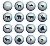 Insieme dell'icona dei mammiferi illustrazione vettoriale