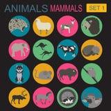 Insieme dell'icona dei mammiferi degli animali Stile piano di vettore Fotografie Stock