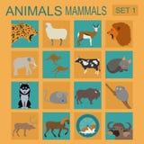 Insieme dell'icona dei mammiferi degli animali Stile piano di vettore Immagini Stock