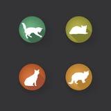 Insieme dell'icona del gatto Raccolta della siluetta dell'icona degli animali domestici Fotografia Stock