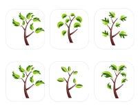 Insieme dell'icona dell'albero Immagine Stock