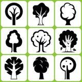 Insieme dell'icona dell'albero Immagini Stock