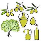 Insieme dell'icona dell'olio d'oliva e dell'oliva Fotografia Stock