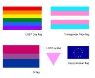 Insieme dell'icona delle bandiere del gay di LGBT, isolato su fondo bianco Bandiera del transessuale Bandiera della Bi, simbolo b Illustrazione di Stock