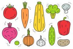 Insieme dell'icona delle verdure Fotografia Stock
