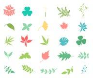 Insieme dell'icona di colore del fiore royalty illustrazione gratis