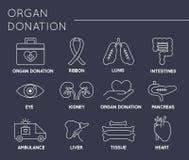 Insieme dell'icona di donazione di organo illustrazione di stock