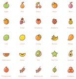 Insieme dell'icona di frutti Fotografia Stock
