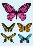 Insieme dell'icona di progettazione della farfalla Fotografia Stock Libera da Diritti
