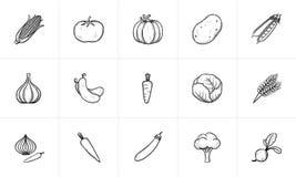 Insieme dell'icona di schizzo dell'alimento di agricoltura Fotografie Stock