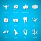 Insieme dell'icona di vettore degli organi interni ed esterni umani nello stile piano Immagine Stock
