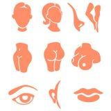 Insieme dell'icona di zone del fronte e delle parti del corpo Illustrazione di Stock