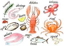 Insieme dell'illustrazione del menu dei frutti di mare dell'acquerello illustrazione di stock
