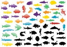 Insieme dell'illustrazione delle siluette dei pesci. illustrazione di stock
