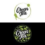 Insieme dell'iscrizione scritta mano del tè verde con la spruzzata e delle foglie per il logos, etichette, distintivo, emblema Fotografia Stock Libera da Diritti
