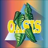 Insieme dell'oasi Fotografie Stock