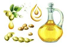 Insieme dell'olio della soia Illustrazione dell'acquerello illustrazione vettoriale