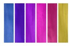 Insieme della bandiera del documento della noce di cocco di colori rosa e degli azzurri isolato Immagine Stock