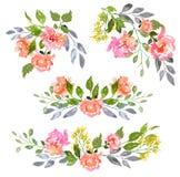 Insieme della composizione floreale dell'acquerello Fotografie Stock