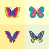 Insieme della farfalla Fotografia Stock