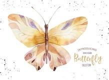 Insieme della farfalla di boho dell'acquerello Arte della molla isolata estate d'annata Illustrazione acquerella partecipazione d illustrazione vettoriale