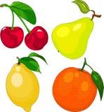 Insieme della frutta del fumetto Fotografia Stock
